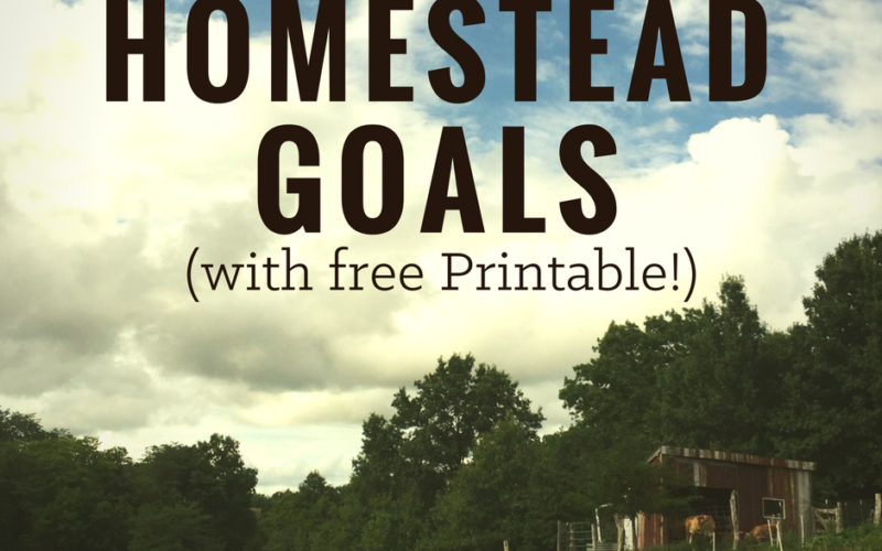 How to Achieve your Homesteading Goals