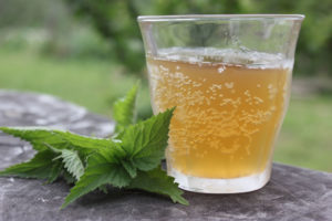 Stinging nettle beer recipe | Homestead Honey