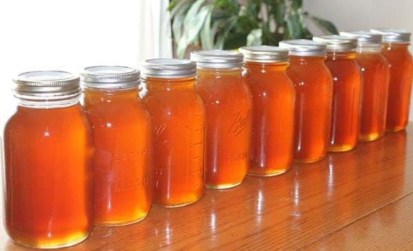 Honey is a fabulous value-rich product to produce and sell as a homestead business.