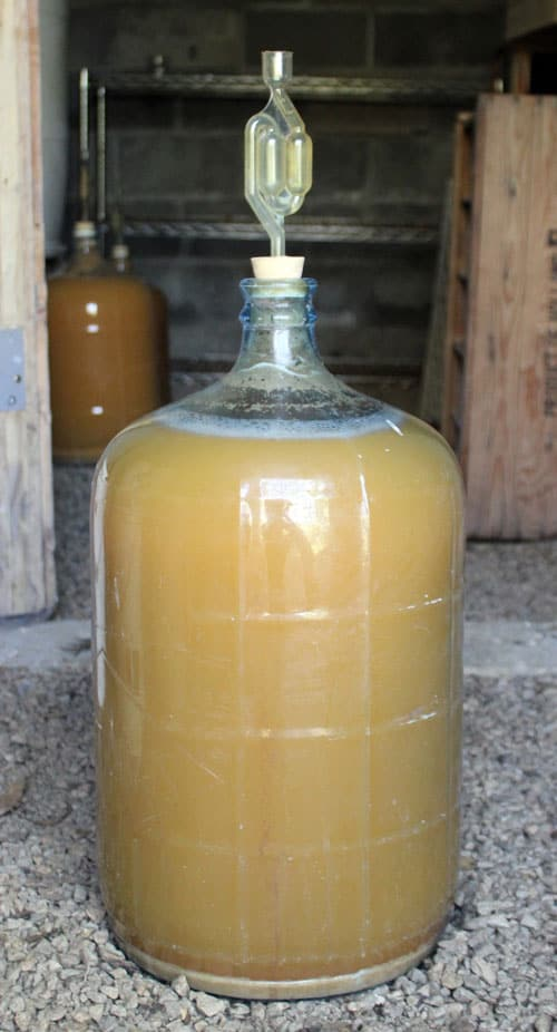 Place your carboy full of hard cider in a cool area to ferment.