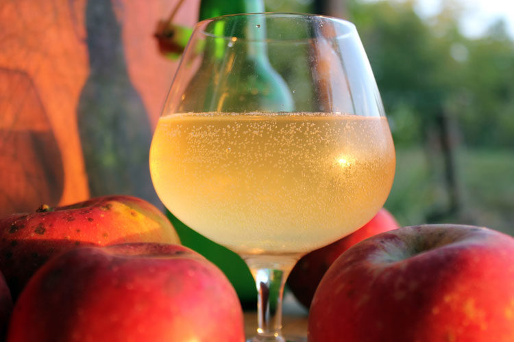 How to make hard cider at home in 5 easy steps!