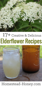 17 delicious and creative elderflower recipes