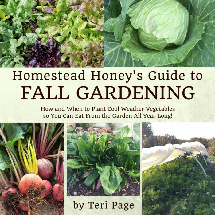 Homestead Honey's Guide to Fall Gardening eBook
