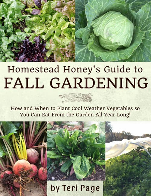 Homestead Honey's Guide to Fall Gardening