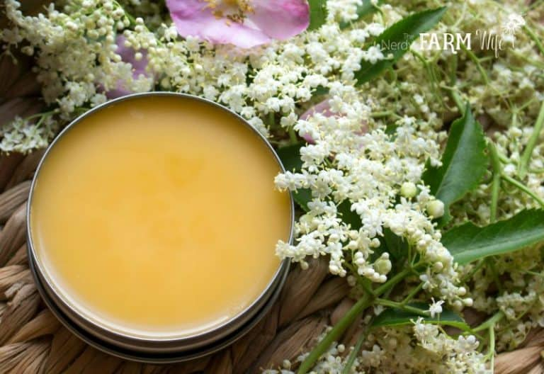 Elderflower and rosehip salve