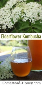 Elderflower Kombucha recipe