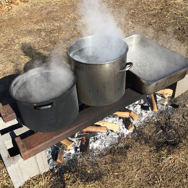 A homemade evaporator for black walnut sap